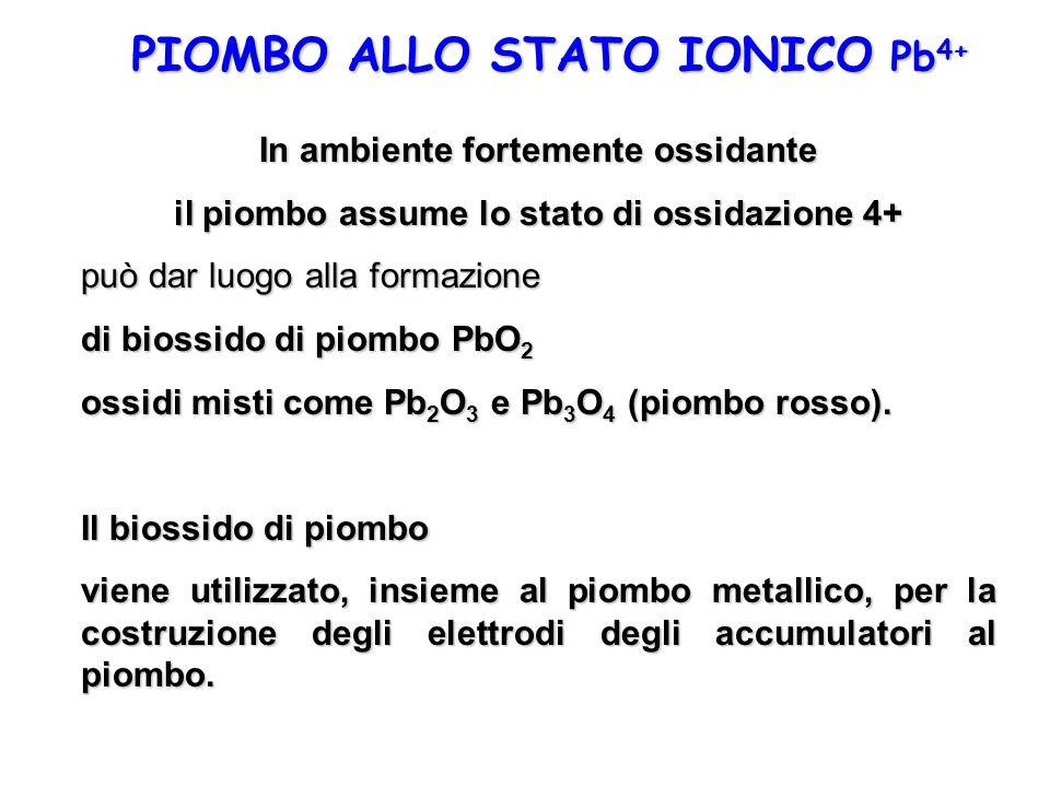 PIOMBO ALLO STATO IONICO Pb 4+ In ambiente fortemente ossidante il piombo assume lo stato di ossidazione 4+ può dar luogo alla formazione di biossido