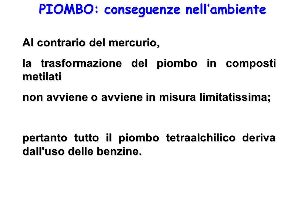 PIOMBO: conseguenze nellambiente Al contrario del mercurio, la trasformazione del piombo in composti metilati non avviene o avviene in misura limitati