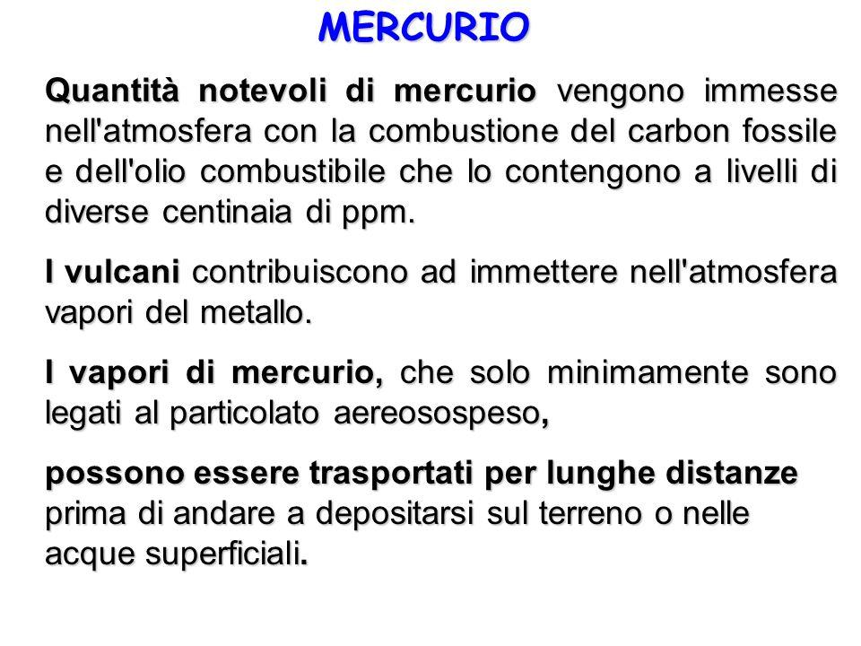MERCURIO Quantità notevoli di mercurio vengono immesse nell'atmosfera con la combustione del carbon fossile e dell'olio combustibile che lo contengono