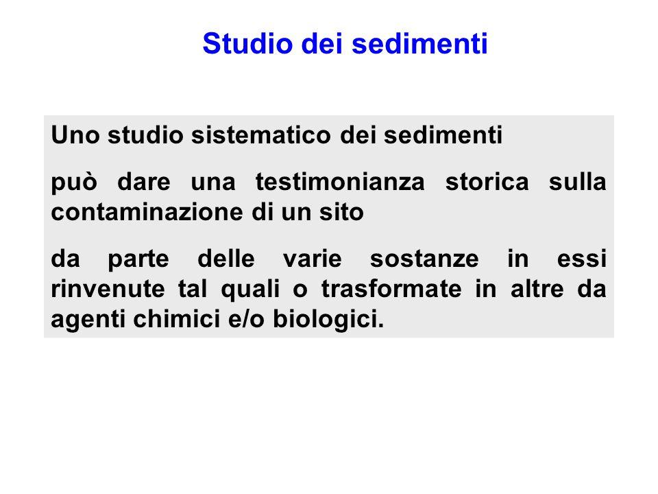 Studio dei sedimenti Uno studio sistematico dei sedimenti può dare una testimonianza storica sulla contaminazione di un sito da parte delle varie sost