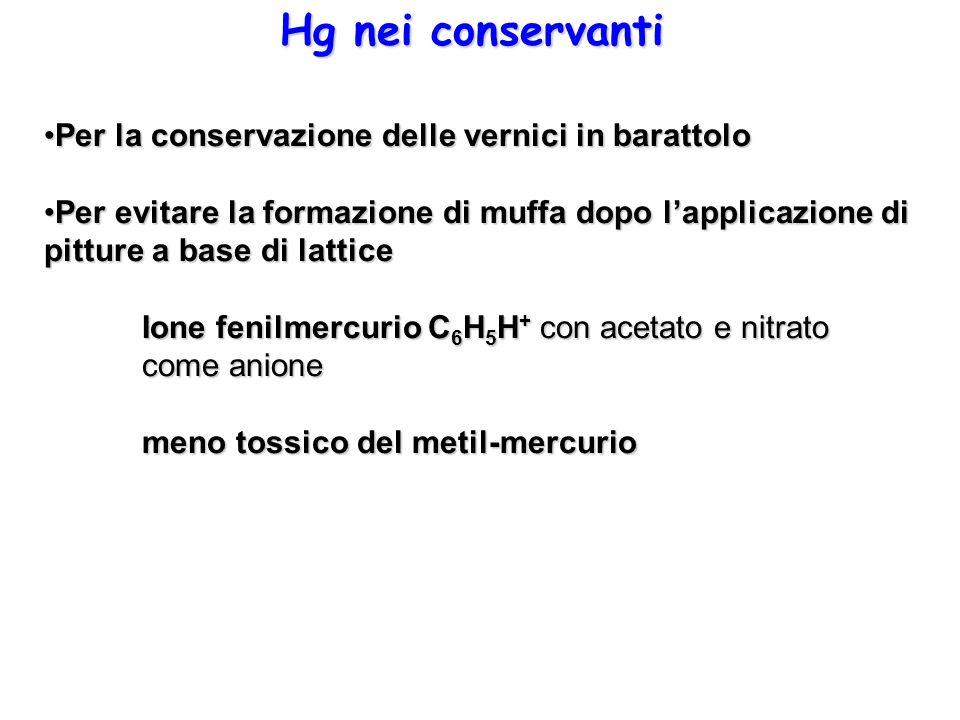Hg nei conservanti Per la conservazione delle vernici in barattoloPer la conservazione delle vernici in barattolo Per evitare la formazione di muffa d