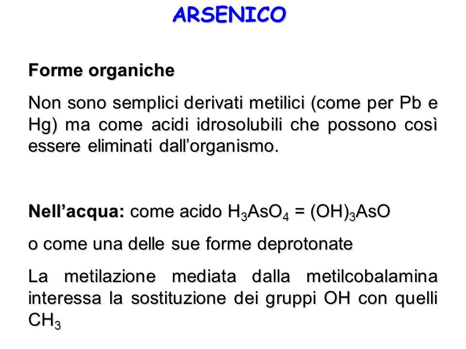 ARSENICO Forme organiche Non sono semplici derivati metilici (come per Pb e Hg) ma come acidi idrosolubili che possono così essere eliminati dallorgan
