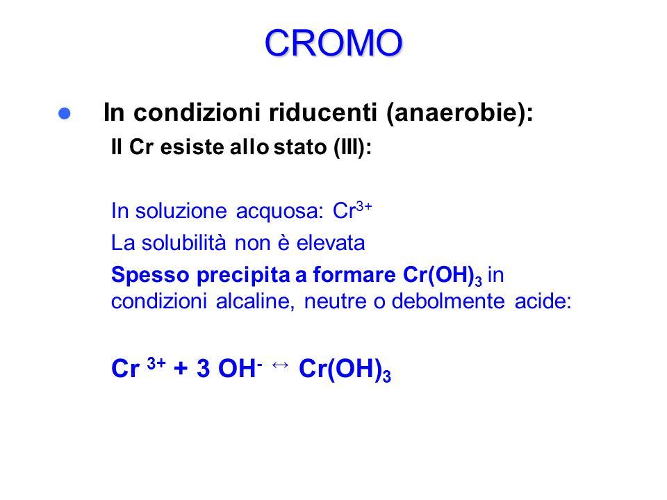 CROMO In condizioni riducenti (anaerobie): – Il Cr esiste allo stato (III): – – In soluzione acquosa: Cr 3+ – La solubilità non è elevata – Spesso pre
