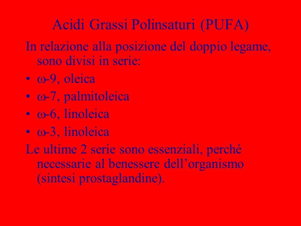 Acidi Grassi Polinsaturi (PUFA) In relazione alla posizione del doppio legame, sono divisi in serie: -9, oleica -7, palmitoleica -6, linoleica -3, lin
