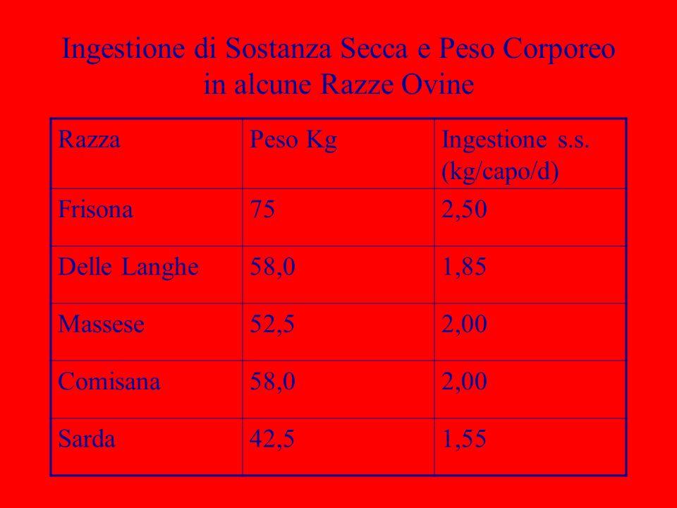 Ingestione di Sostanza Secca e Peso Corporeo in alcune Razze Ovine RazzaPeso KgIngestione s.s. (kg/capo/d) Frisona752,50 Delle Langhe58,01,85 Massese5