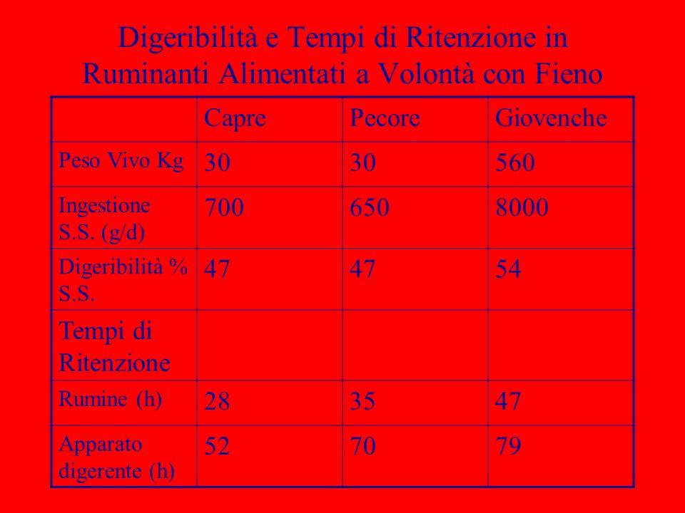 Digeribilità e Tempi di Ritenzione in Ruminanti Alimentati a Volontà con Fieno CaprePecoreGiovenche Peso Vivo Kg 30 560 Ingestione S.S. (g/d) 70065080