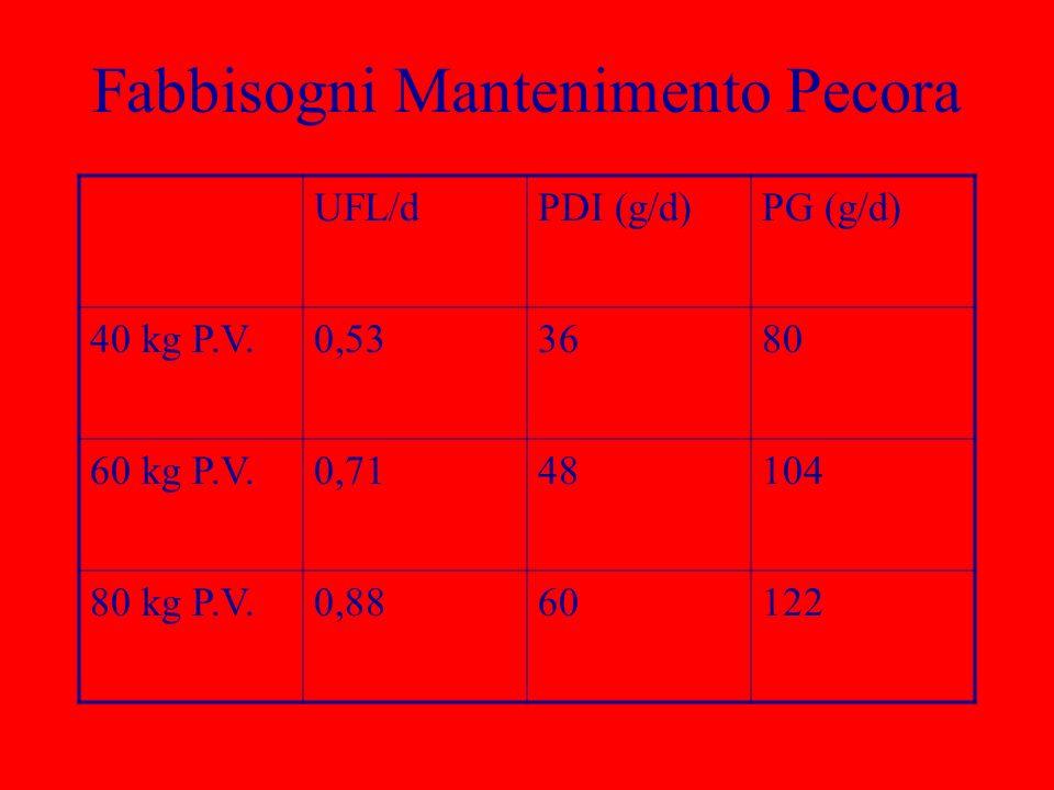Fabbisogni Mantenimento Pecora UFL/dPDI (g/d)PG (g/d) 40 kg P.V.0,533680 60 kg P.V.0,7148104 80 kg P.V.0,8860122