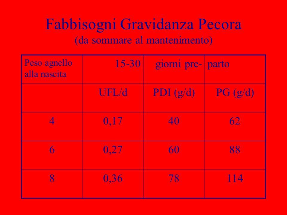 Fabbisogni Gravidanza Pecora (da sommare al mantenimento) Peso agnello alla nascita 15-30giorni pre-parto UFL/dPDI (g/d)PG (g/d) 40,174062 60,276088 8