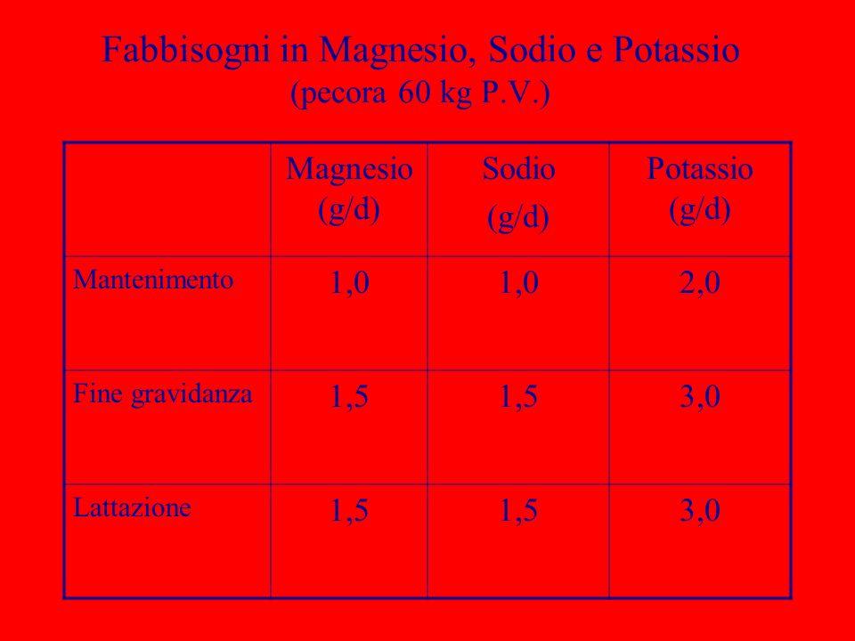 Fabbisogni in Magnesio, Sodio e Potassio (pecora 60 kg P.V.) Magnesio (g/d) Sodio (g/d) Potassio (g/d) Mantenimento 1,0 2,0 Fine gravidanza 1,5 3,0 La