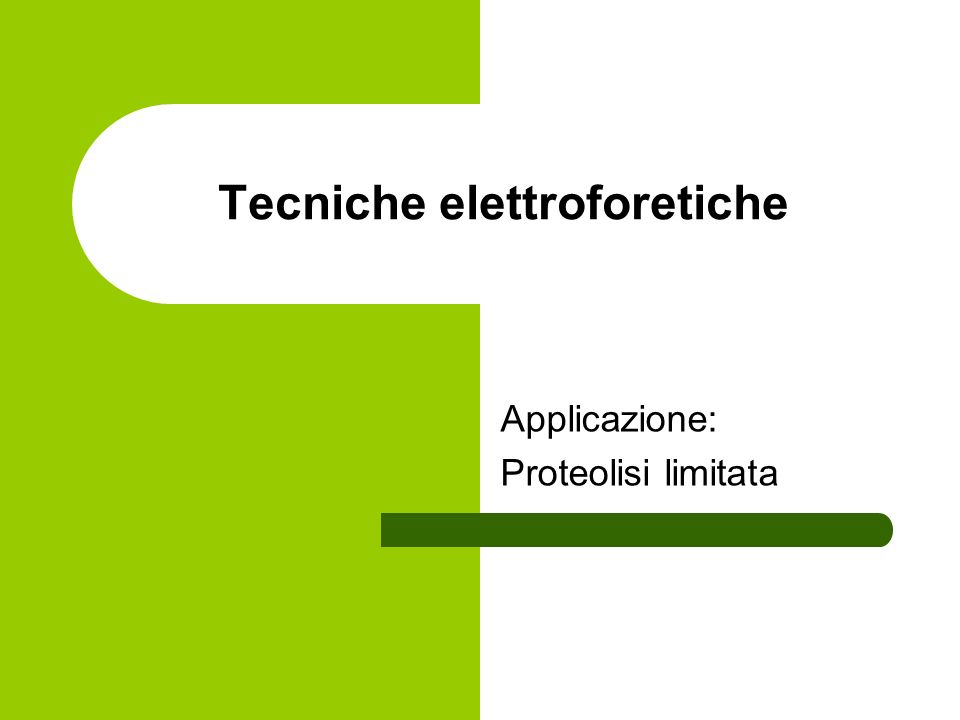 Tecniche elettroforetiche Applicazione: Proteolisi limitata