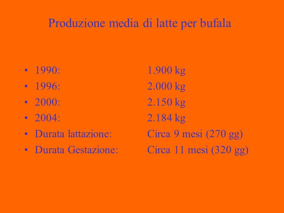 Produzione media di latte per bufala 1990: 1996: 2000: 2004: Durata lattazione: Durata Gestazione: 1.900 kg 2.000 kg 2.150 kg 2.184 kg Circa 9 mesi (270 gg) Circa 11 mesi (320 gg)