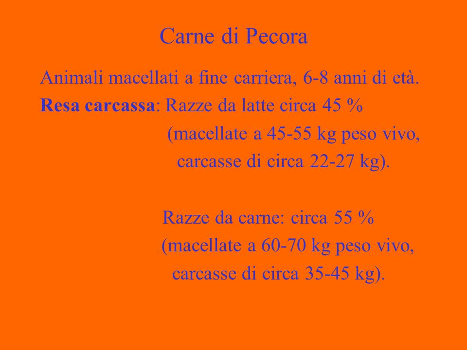 Carne di Pecora Animali macellati a fine carriera, 6-8 anni di età.