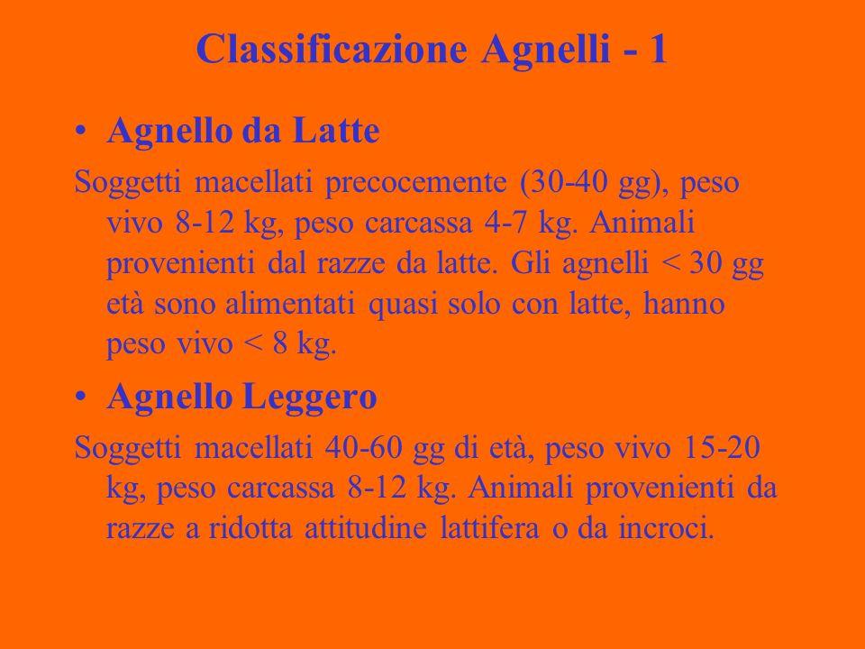 Classificazione Agnelli - 1 Agnello da Latte Soggetti macellati precocemente (30-40 gg), peso vivo 8-12 kg, peso carcassa 4-7 kg.