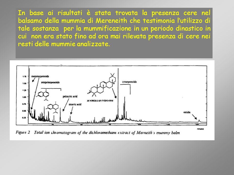 In base ai risultati è stata trovata la presenza cere nel balsamo della mummia di Mereneith che testimonia lutilizzo di tale sostanza per la mummifica