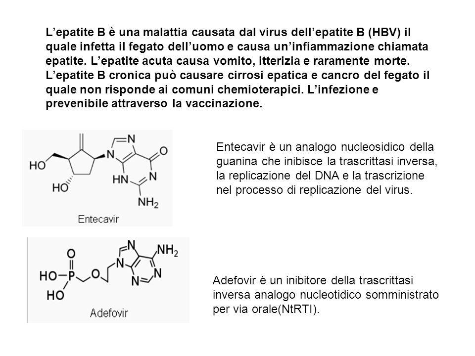 Entecavir è un analogo nucleosidico della guanina che inibisce la trascrittasi inversa, la replicazione del DNA e la trascrizione nel processo di replicazione del virus.