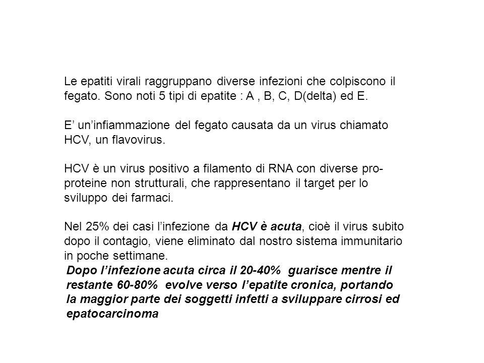 Le epatiti virali raggruppano diverse infezioni che colpiscono il fegato. Sono noti 5 tipi di epatite : A, B, C, D(delta) ed E. E uninfiammazione del