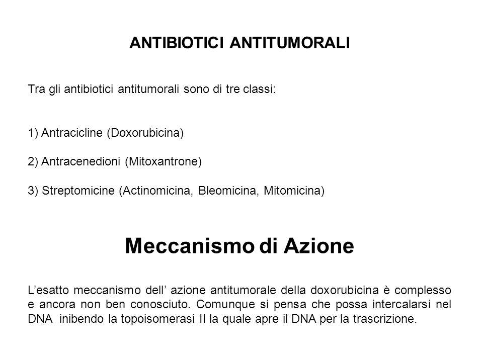ANTIBIOTICI ANTITUMORALI Tra gli antibiotici antitumorali sono di tre classi: 1) Antracicline (Doxorubicina) 2) Antracenedioni (Mitoxantrone) 3) Strep