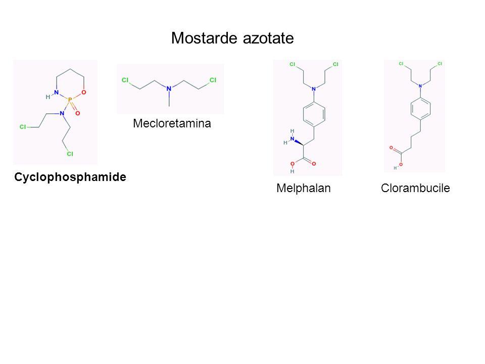 Mostarde azotate Cyclophosphamide Mecloretamina MelphalanClorambucile