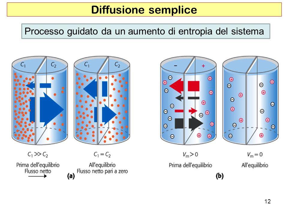 Diffusione semplice Processo guidato da un aumento di entropia del sistema 12