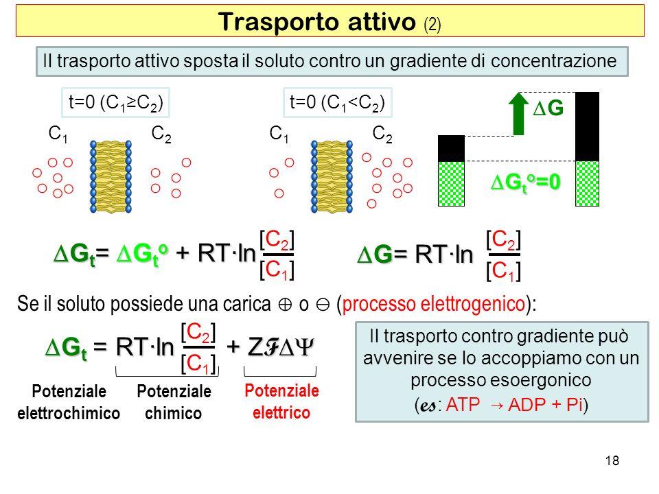 18 Trasporto attivo (2) Il trasporto attivo sposta il soluto contro un gradiente di concentrazione t=0 (C 1 C 2 ) C1C1 C2C2 t=0 (C 1 <C 2 ) C1C1 C2C2