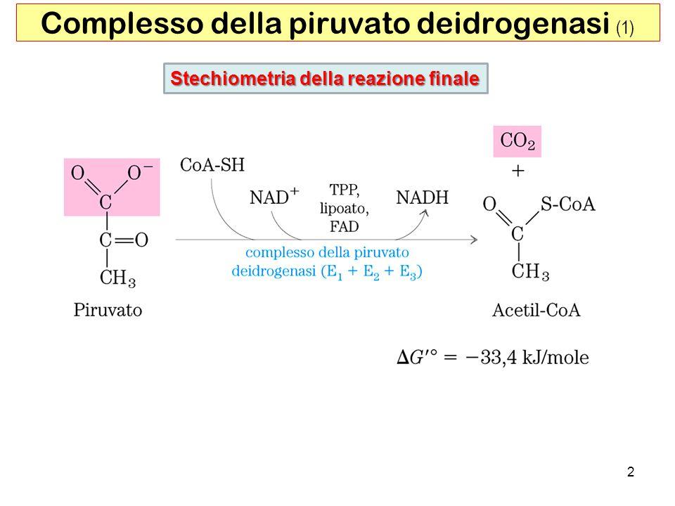 2 Complesso della piruvato deidrogenasi (1) Stechiometria della reazione finale