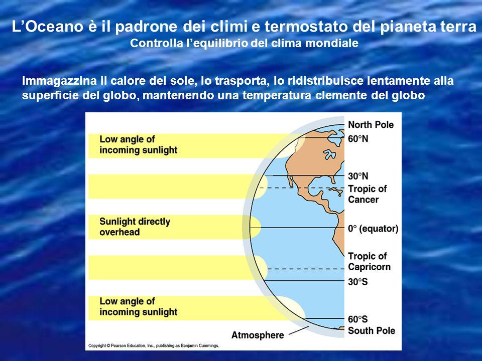 Oceano Atlantico Il secondo in grandezza Si è formato 175 Ma, quando lEuropa si è separata dallAmerica del Nord Si estende in entrambi gli emisferi, dalla Groenlandia fino a capo Horn Vi troviamo tutti i climi Poche isole ma molte platee continentali Si allarga 2-4 cm allanno