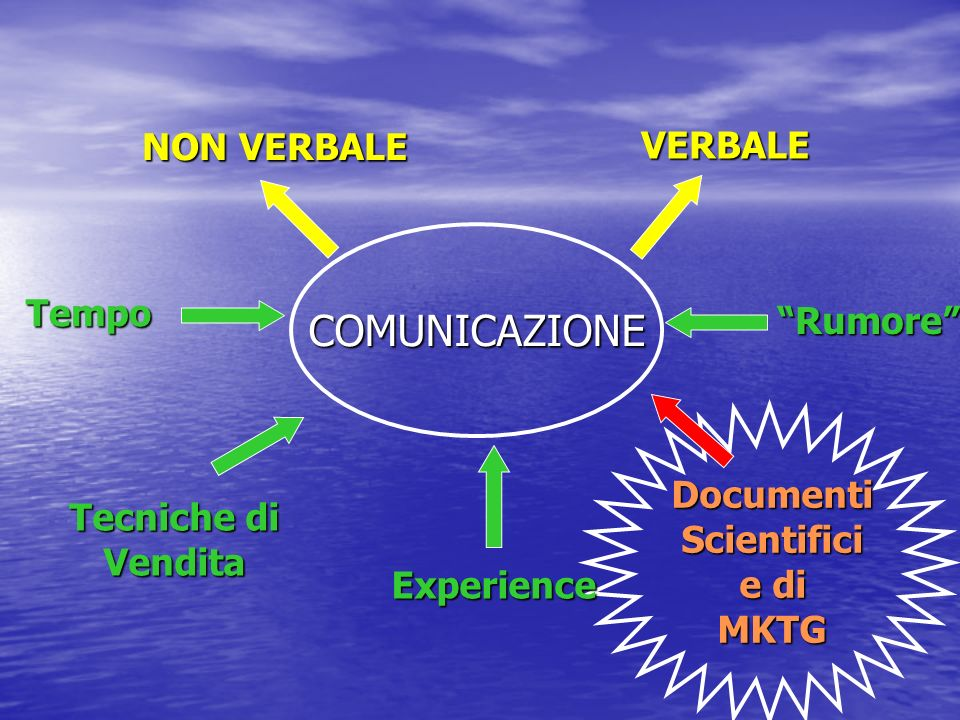 COMUNICAZIONEVERBALE NON VERBALE DocumentiScientifici e di MKTG Experience Tecniche di Vendita Tempo Rumore