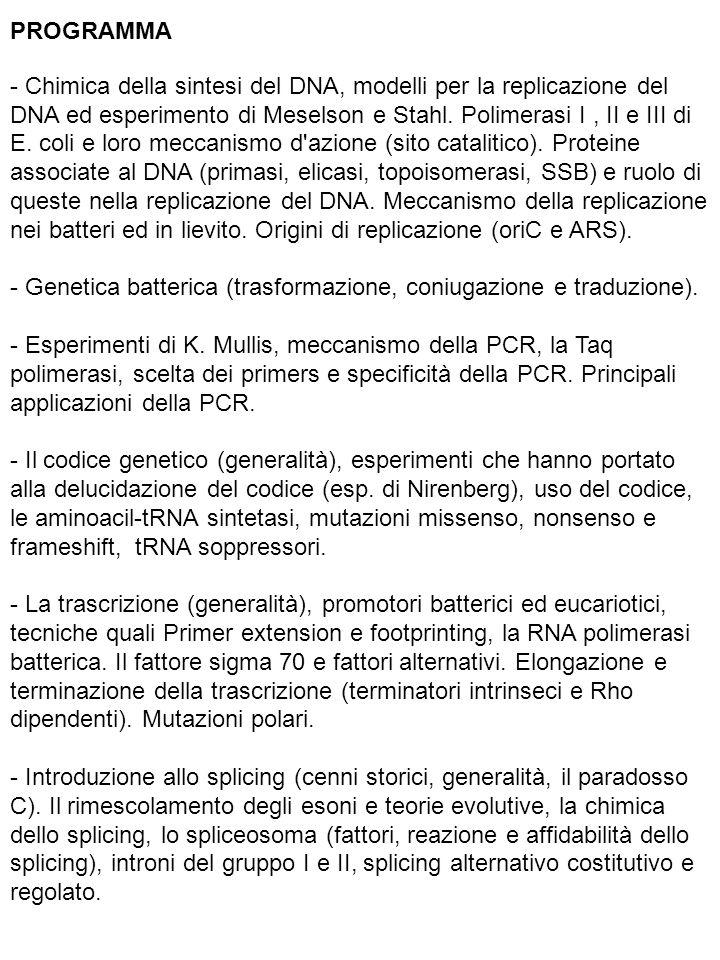 PROGRAMMA - Chimica della sintesi del DNA, modelli per la replicazione del DNA ed esperimento di Meselson e Stahl. Polimerasi I, II e III di E. coli e