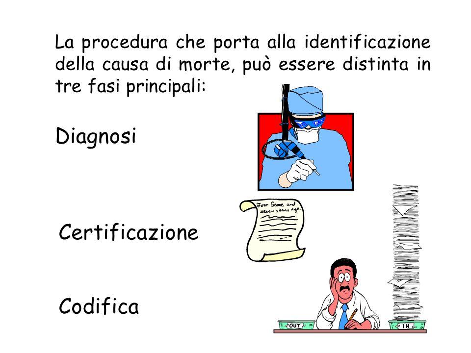 La procedura che porta alla identificazione della causa di morte, può essere distinta in tre fasi principali: Diagnosi Certificazione Codifica