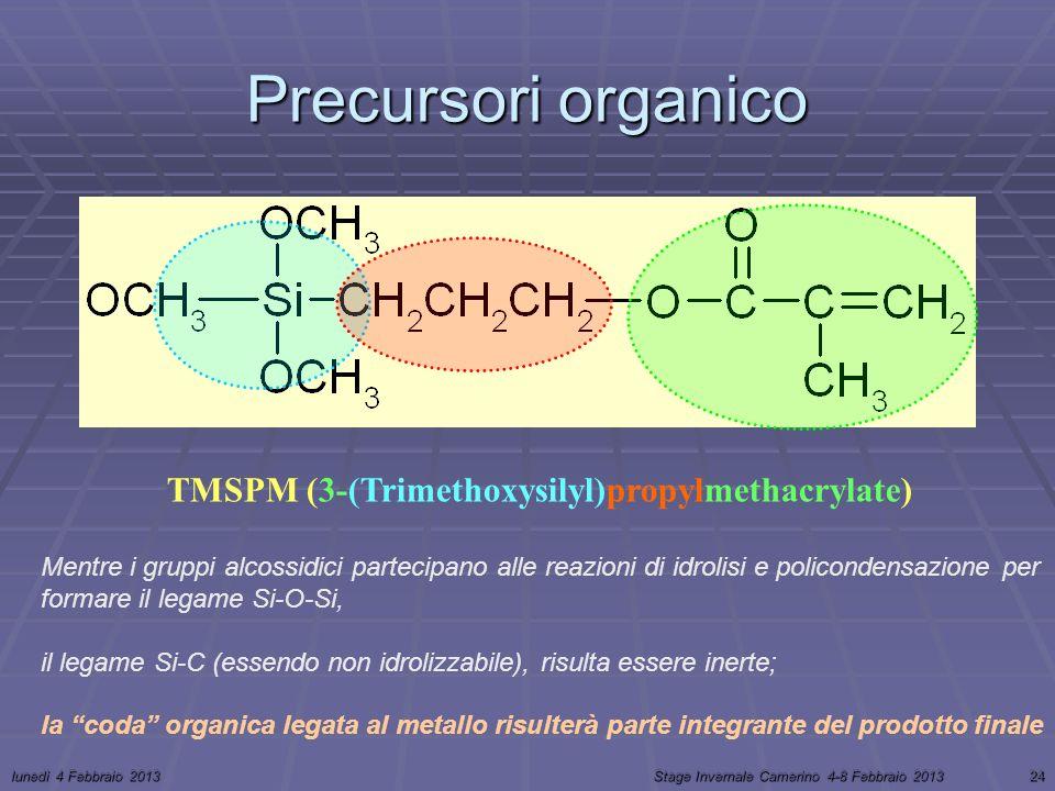 lunedì 4 Febbraio 2013Stage Invernale Camerino 4-8 Febbraio 201324 Precursori organico TMSPM (3-(Trimethoxysilyl)propylmethacrylate) Mentre i gruppi alcossidici partecipano alle reazioni di idrolisi e policondensazione per formare il legame Si-O-Si, il legame Si-C (essendo non idrolizzabile), risulta essere inerte; la coda organica legata al metallo risulterà parte integrante del prodotto finale