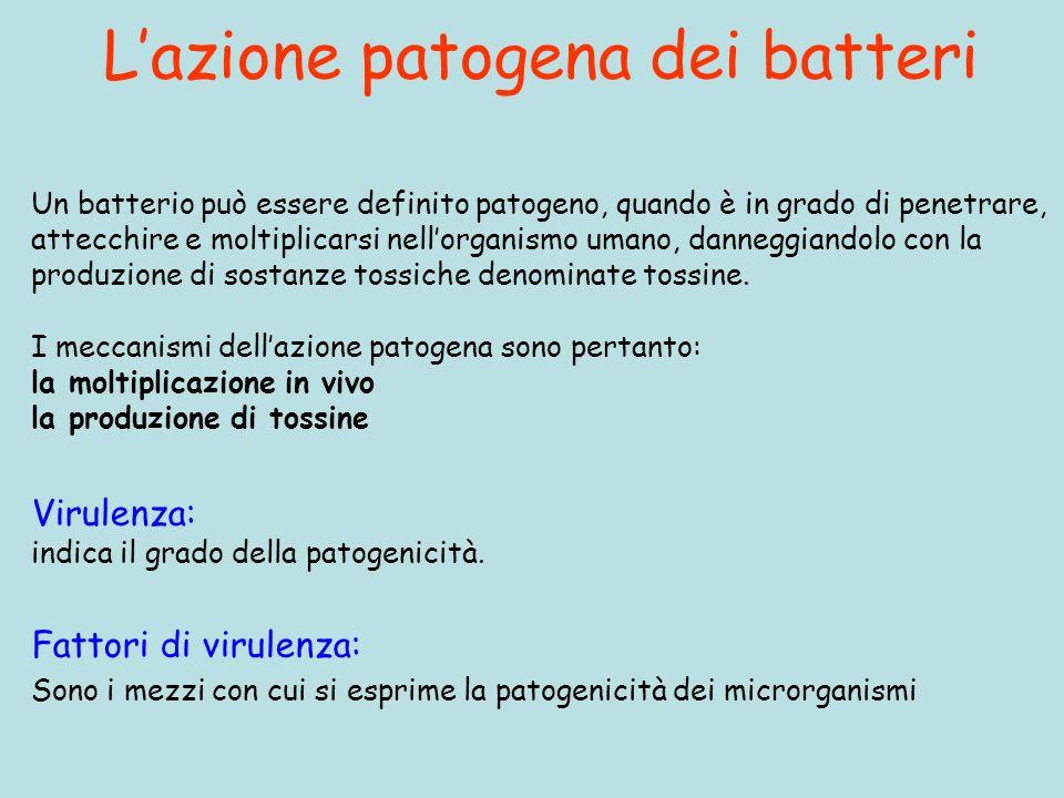Lazione patogena dei batteri Fattori di virulenza: Sono i mezzi con cui si esprime la patogenicità dei microrganismi Un batterio può essere definito p