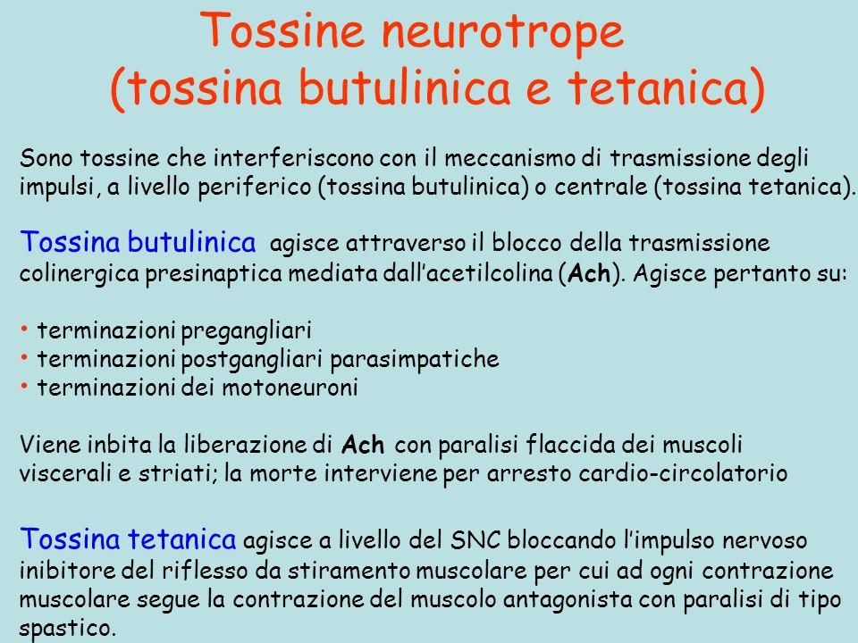 Tossine neurotrope (tossina butulinica e tetanica) Tossina tetanica agisce a livello del SNC bloccando limpulso nervoso inibitore del riflesso da stiramento muscolare per cui ad ogni contrazione muscolare segue la contrazione del muscolo antagonista con paralisi di tipo spastico.