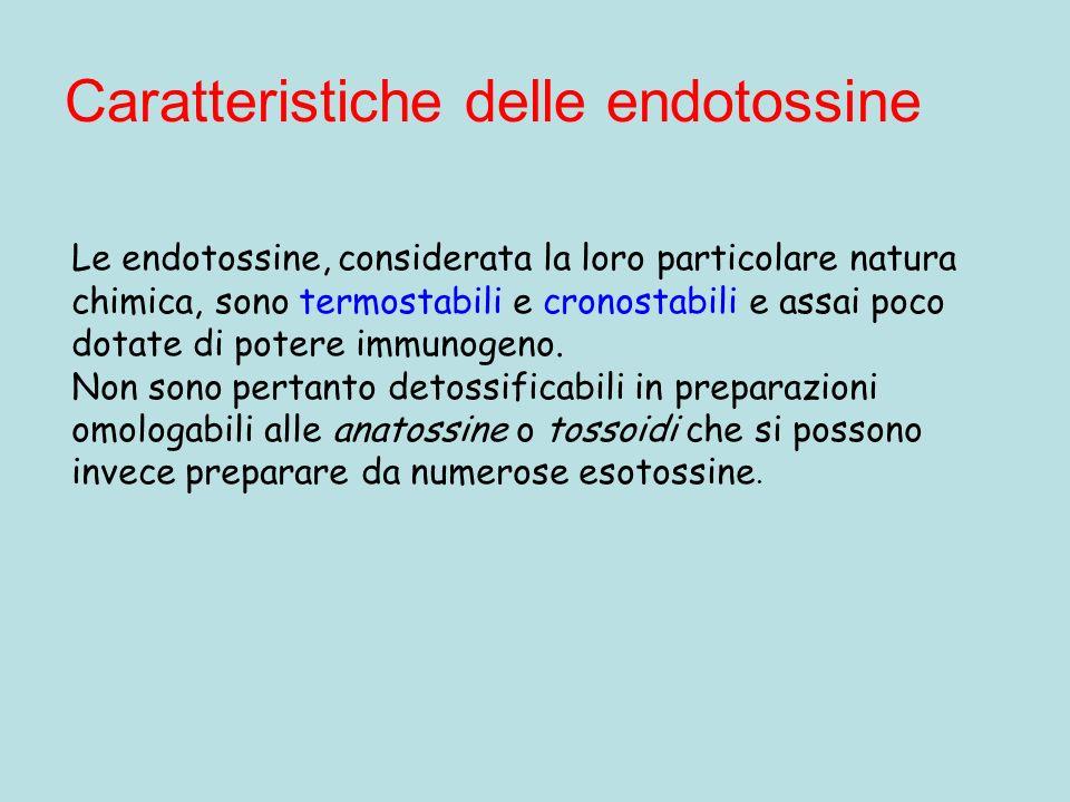 Caratteristiche delle endotossine Le endotossine, considerata la loro particolare natura chimica, sono termostabili e cronostabili e assai poco dotate di potere immunogeno.