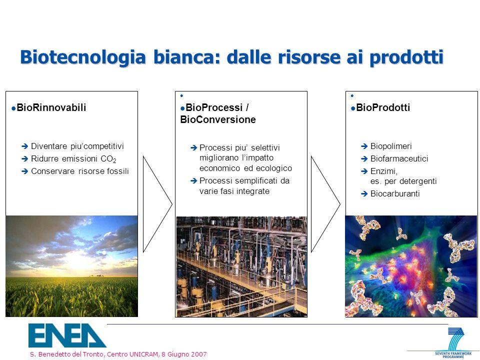 S. Benedetto del Tronto, Centro UNICRAM, 8 Giugno 2007 Biotecnologia bianca: dalle risorse ai prodotti l BioRinnovabili è Diventare piucompetitivi è R