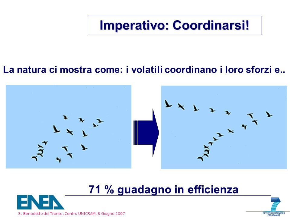 S. Benedetto del Tronto, Centro UNICRAM, 8 Giugno 2007 Imperativo: Coordinarsi! La natura ci mostra come: i volatili coordinano i loro sforzi e.. 71 %