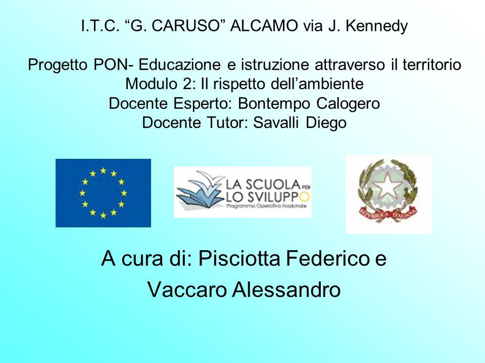 I.T.C. G. CARUSO ALCAMO via J. Kennedy Progetto PON- Educazione e istruzione attraverso il territorio Modulo 2: Il rispetto dellambiente Docente Esper