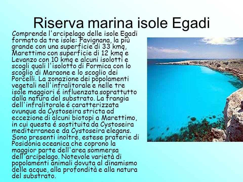 Riserva marina isole Egadi Comprende l'arcipelago delle isole Egadi formato da tre isole: Favignana, la più grande con una superficie di 33 kmq, Maret