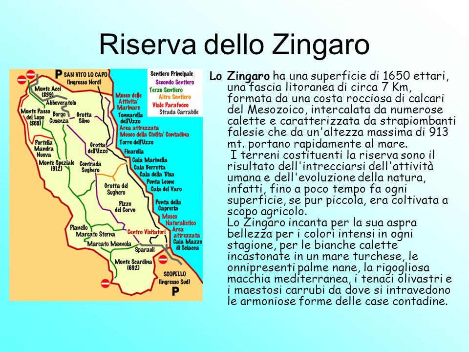 Riserva dello Zingaro Lo Zingaro ha una superficie di 1650 ettari, una fascia litoranea di circa 7 Km, formata da una costa rocciosa di calcari del Me