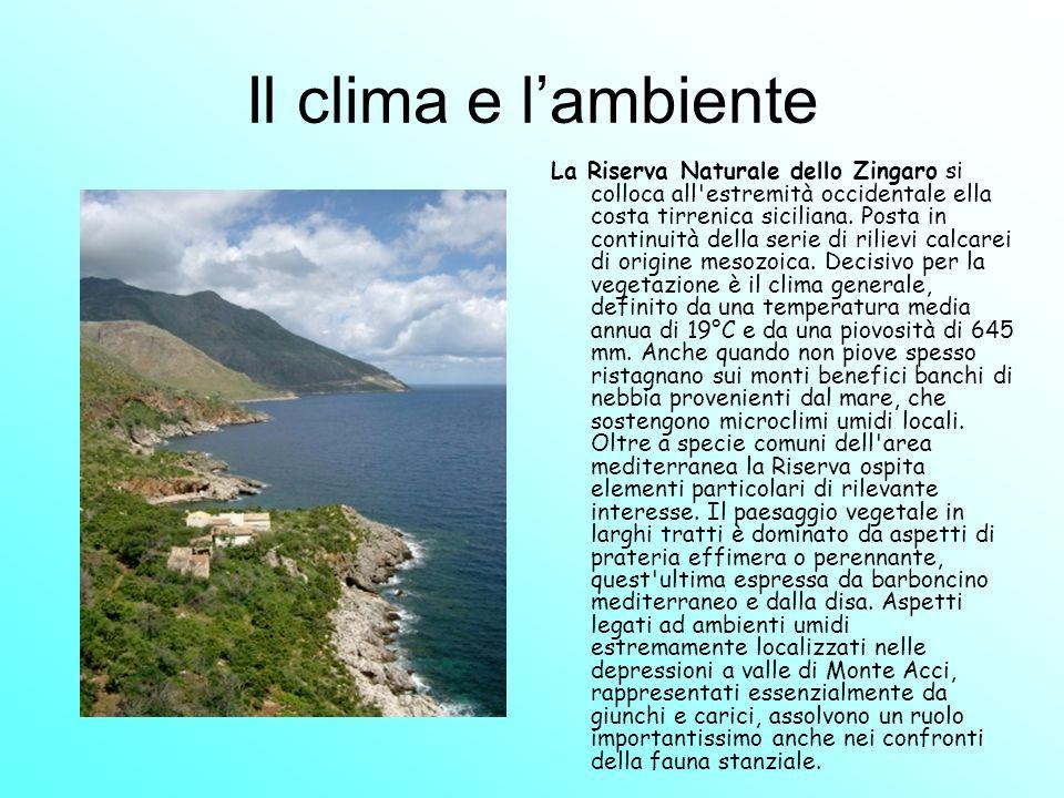 Il clima e lambiente La Riserva Naturale dello Zingaro si colloca all'estremità occidentale ella costa tirrenica siciliana. Posta in continuità della