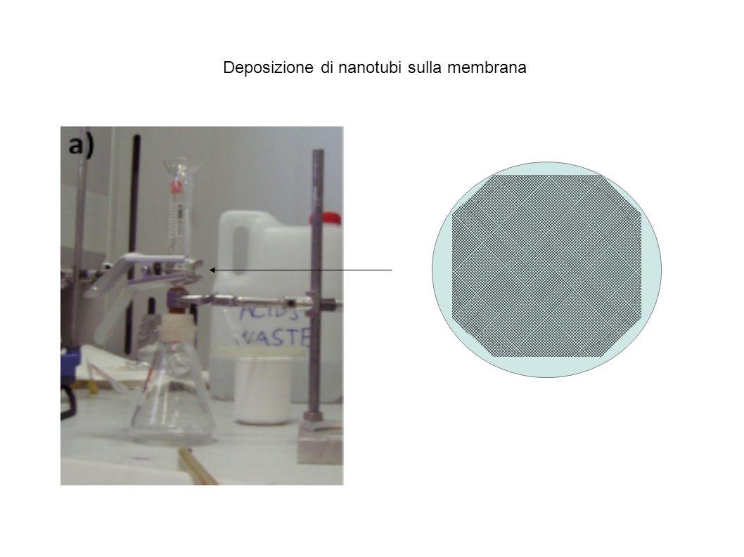 Deposizione di nanotubi sulla membrana