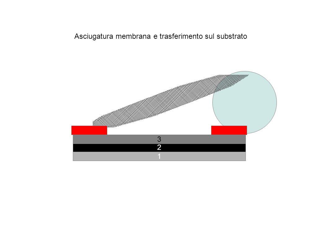 Si-n+ Si-n Al SiO2 Ag A 0) Protezione in plastica 1)Al 2) Si-n+ 3) Si-n 4) SiO2 5)HF