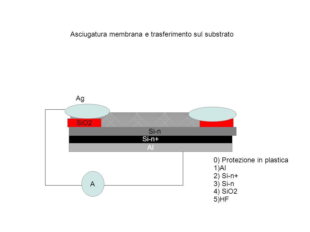 Fotone di energia > Egap Lacuna che va verso l energia minima Elettrone che va verso l energia minima Eccitazione di portatori attraverso radiazione in una giunzione P-N ( fotodiodo, cella solare) P N Nantubo/Si e una giunzione p-n V Corrente V (positivo polarizzazione diretta della giunzione) Isc (corrente di corto circuito)