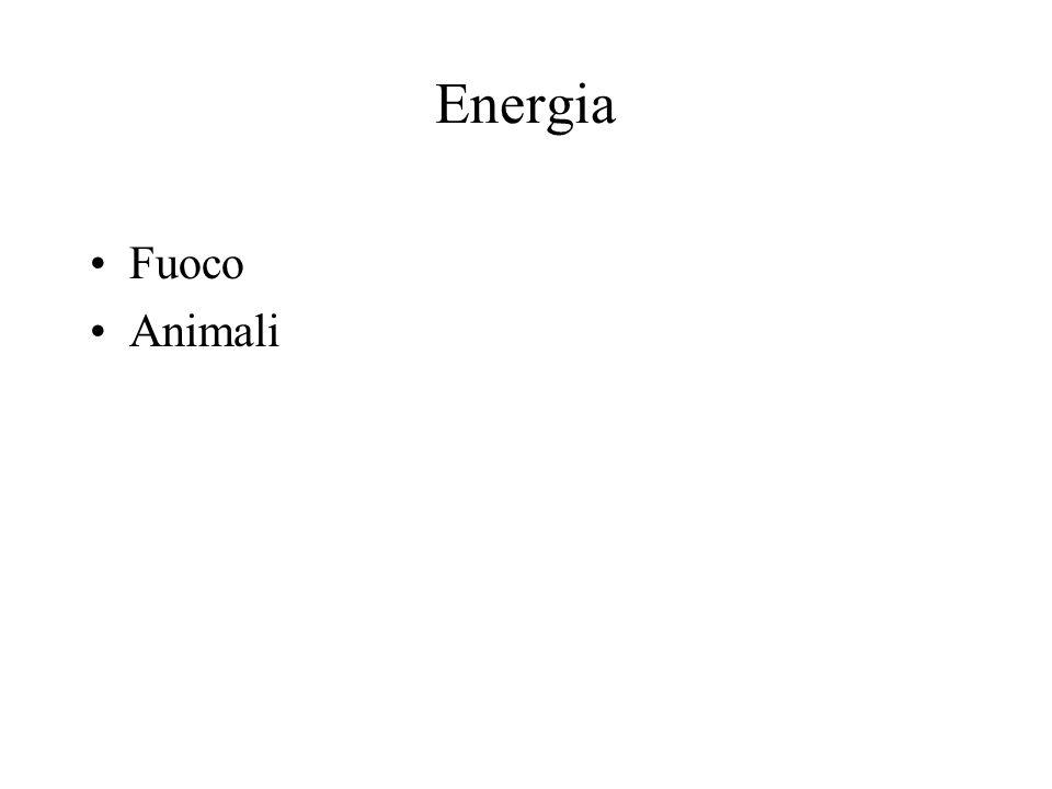 Energia Fuoco Animali