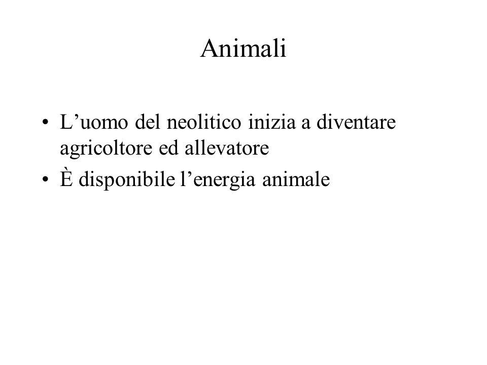 Animali Luomo del neolitico inizia a diventare agricoltore ed allevatore È disponibile lenergia animale