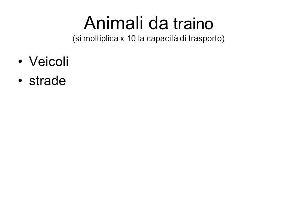 Animali da traino (si moltiplica x 10 la capacità di trasporto) Veicoli strade