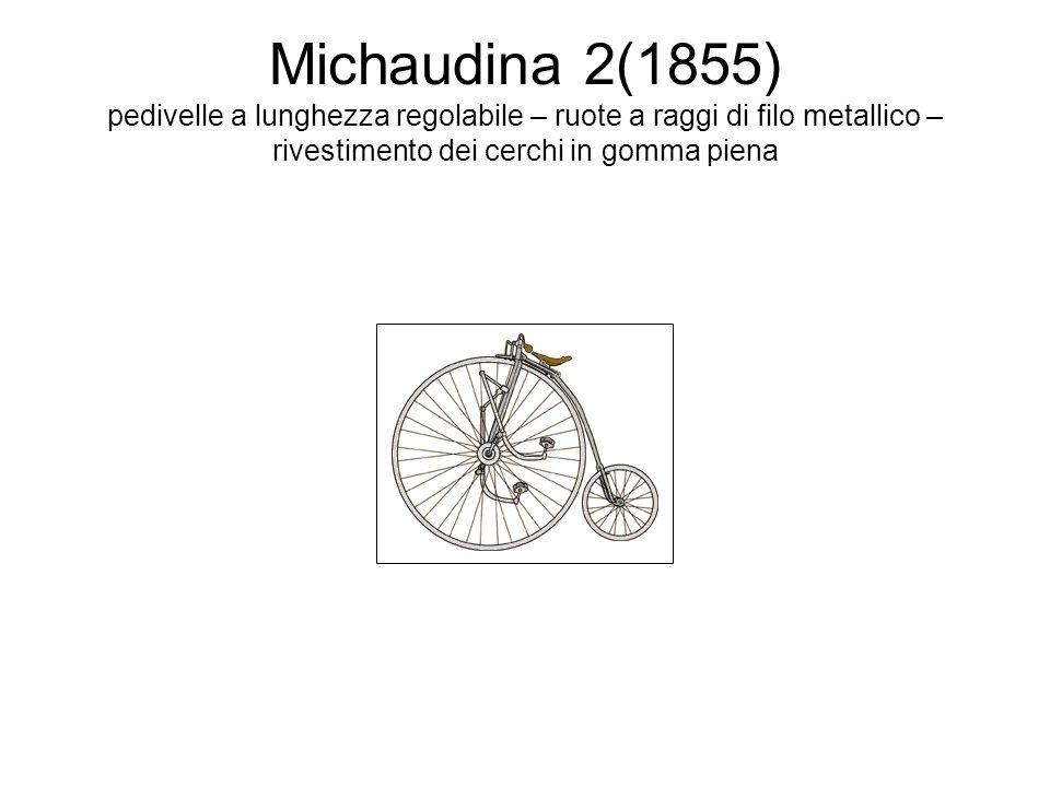 Michaudina 3 (1861) freno posteriore