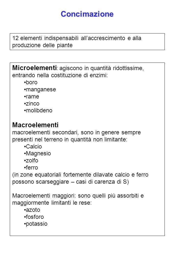 Concimazione 12 elementi indispensabili allaccrescimento e alla produzione delle piante Microelementi : agiscono in quantità ridottissime, entrando ne