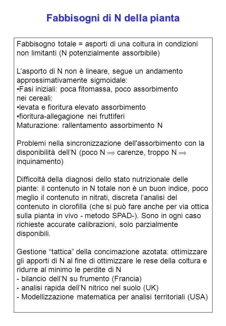 Fabbisogni di N della pianta Fabbisogno totale = asporti di una coltura in condizioni non limitanti (N potenzialmente assorbibile) Lasporto di N non è