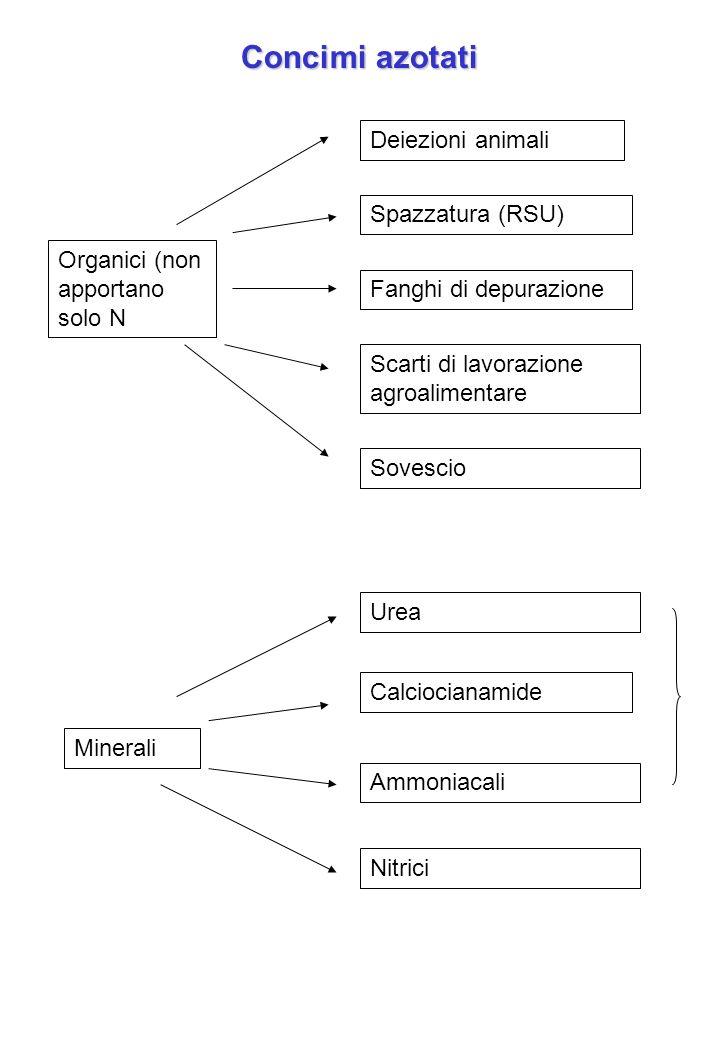 Concimi azotati Organici (non apportano solo N Minerali Scarti di lavorazione agroalimentare Spazzatura (RSU) Deiezioni animali Sovescio Fanghi di dep