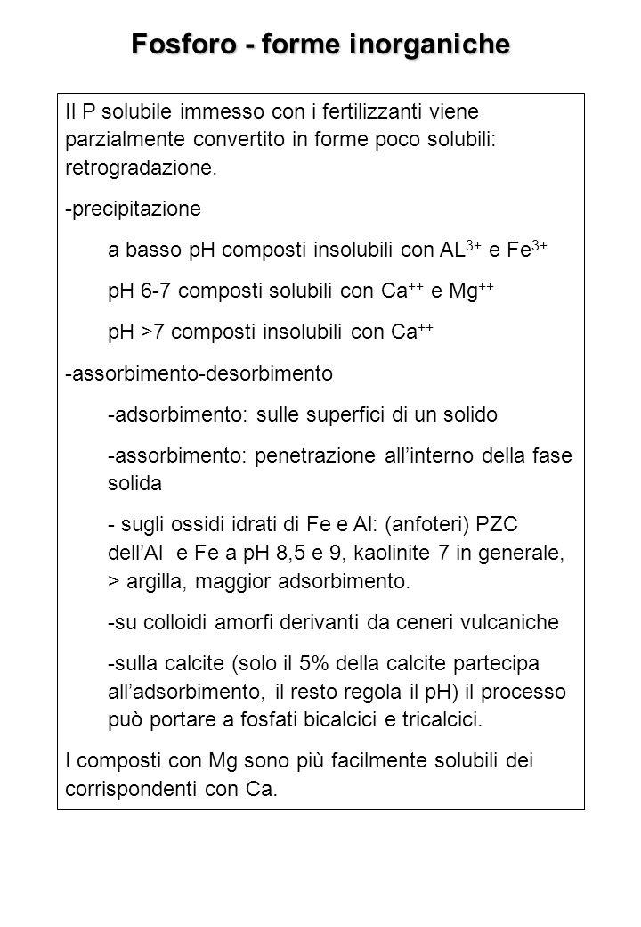 Fosforo - forme inorganiche Il P solubile immesso con i fertilizzanti viene parzialmente convertito in forme poco solubili: retrogradazione. -precipit